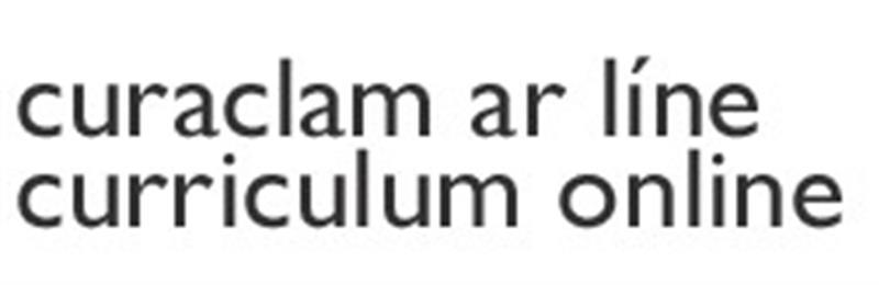 currculum on line.jpg