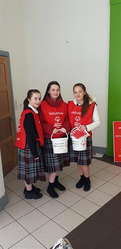 TY Students Collecting for Special Olympics Ireland